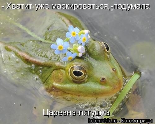 Котоматрица: - Хватит уже маскироваться,-подумала Царевна-лягушка