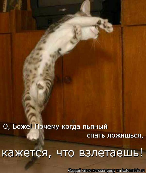 Котоматрица: О, Боже! Почему когда пьяный спать ложишься, кажется, что взлетаешь!