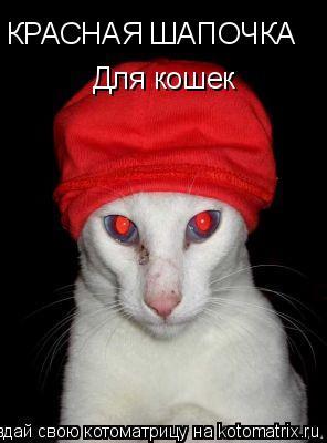 Котоматрица: КРАСНАЯ ШАПОЧКА КРАСНАЯ ШАПОЧКА Для кошек Для кошек