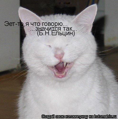 Котоматрица: Эет-то,я что говорю... ...значится так... (Б.Н.Ельцин)