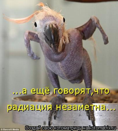 Котоматрица: ...а ещё говорят,что радиация незаметна...