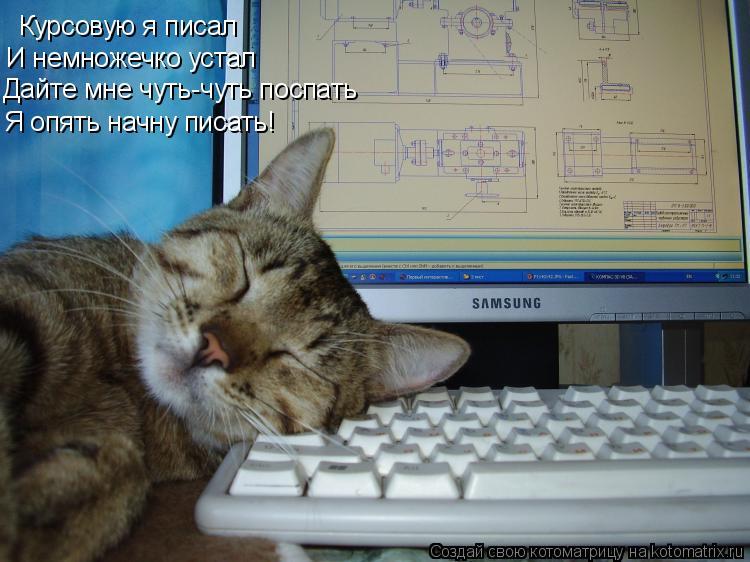 Котоматрица: Курсовую я писал И немножечко устал Дайте мне чуть-чуть поспать Я опять начну писать!
