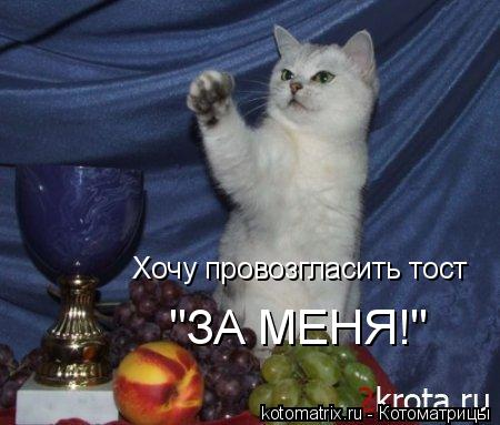 """Котоматрица: Хочу провозгласить тост """"ЗА МЕНЯ!"""""""