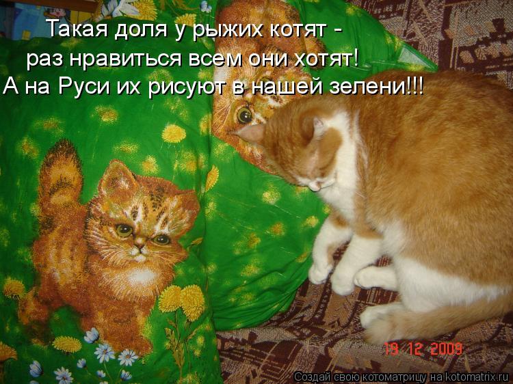 Котоматрица: Такая доля у рыжих котят - раз нравиться всем они хотят! А на Руси их рисуют в нашей зелени!!!