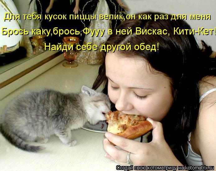Котоматрица: Найди себе другой обед! Брось каку,брось,Фууу в ней Вискас, Кити-Кет! Для тебя кусок пиццы велик,он как раз для меня