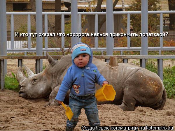 Котоматрица: И кто тут сказал что носорога нельзя прикончить лопаткаой?