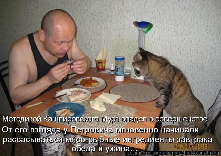 Котоматрица: рассасываться мясо-рыбные ингредиенты завтрака  обеда и ужина... От его взгляда у Петровича мгновенно начинали  Методикой Кашпировского Му