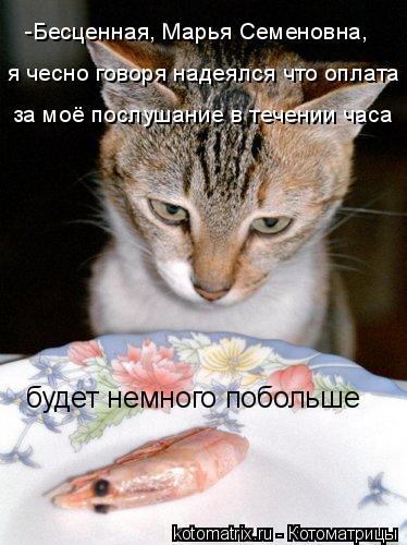 Котоматрица: я чесно говоря надеялся что оплата -Бесценная, Марья Семеновна,  за моё послушание в течении часа будет немного побольше