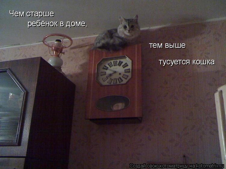 Котоматрица: Чем старше  ребёнок в доме,  тем выше  тусуется кошка