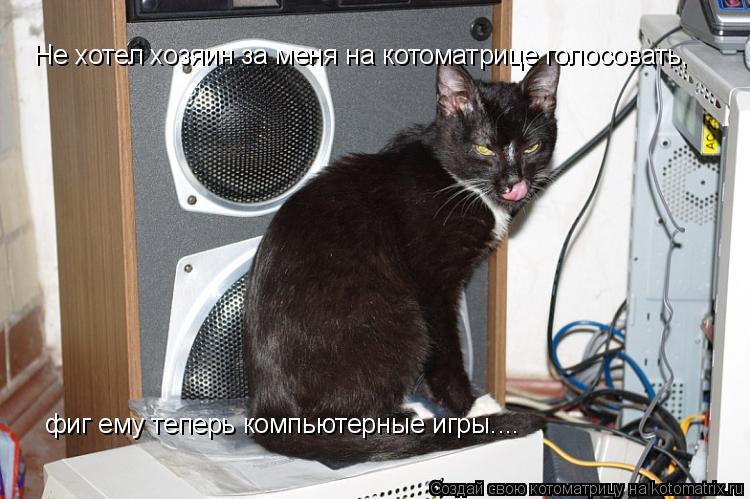Котоматрица: Не хотел хозяин за меня на котоматрице голосовать, фиг ему теперь компьютерные игры....