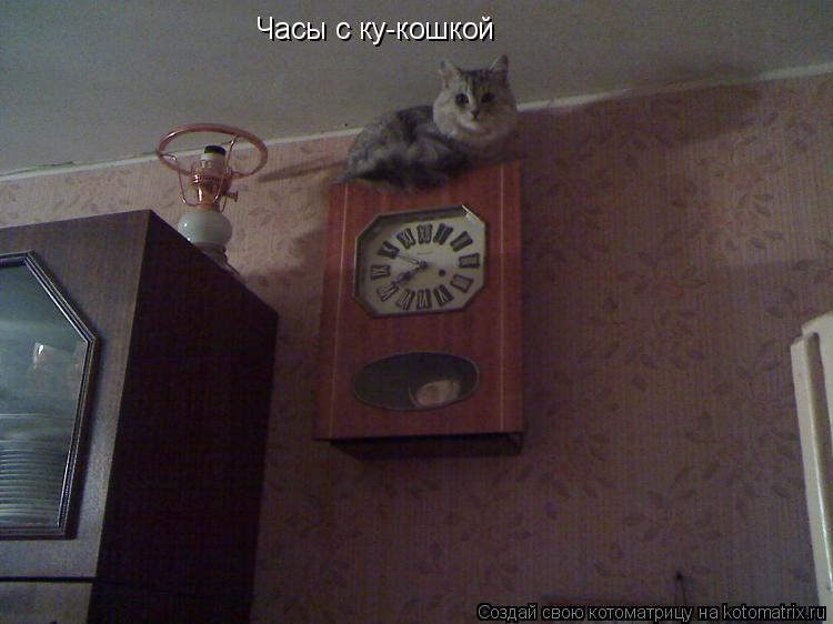 Котоматрица: Часы с ку-кошкой