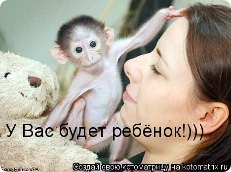 Котоматрица: У Вас будет ребёнок!)))