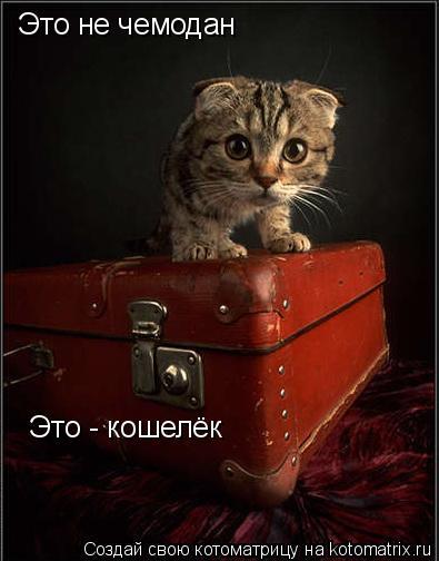 Котоматрица: Это не чемодан Это - кошелёк
