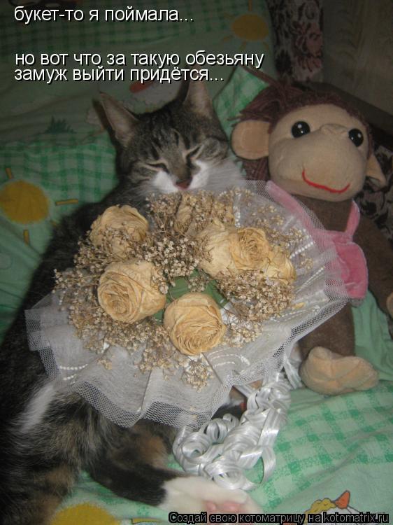 Котоматрица: букет-то я поймала... но вот что за такую обезьяну  замуж выйти придётся...