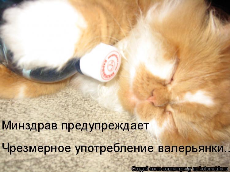 Котоматрица: Минздрав предупреждает Чрезмерное употребление валерьянки..