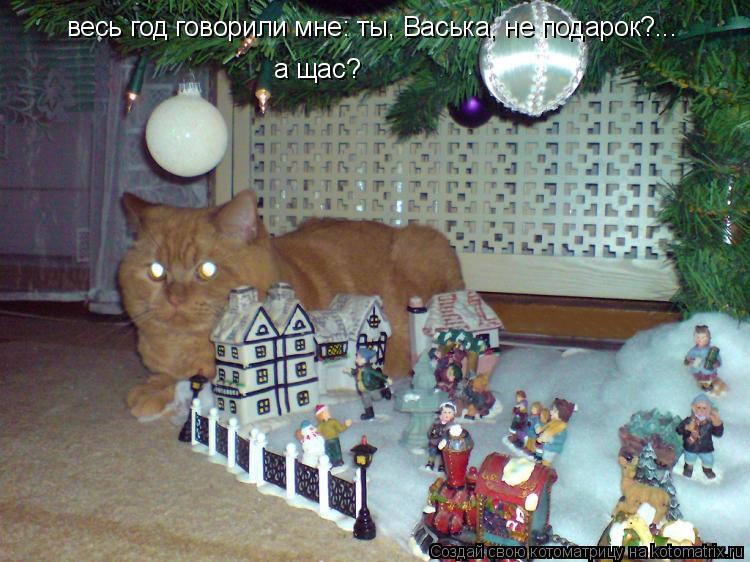 Котоматрица: а щас? весь год говорили мне: ты, Васька, не подарок?...