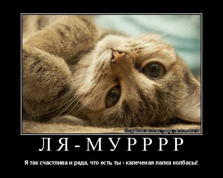 Котоматрица: Ля-Мурррр Я так счастлива и рада, что есть ты - калеченая палка колбасы!