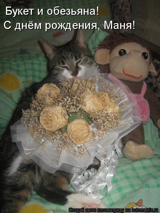 Котоматрица: Букет и обезьяна! С днём рождения, Маня!
