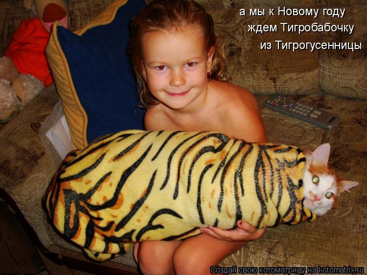 Котоматрица: а мы к Новому году ждем Тигробабочку из Тигрогусенницы