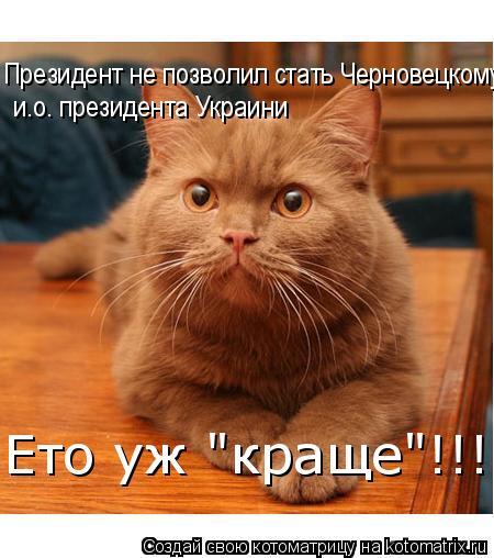 """Котоматрица: Президент не позволил стать Черновецкому и.о. президента Украини  и.о. президента Украини Ето уж """"краще""""!!!"""