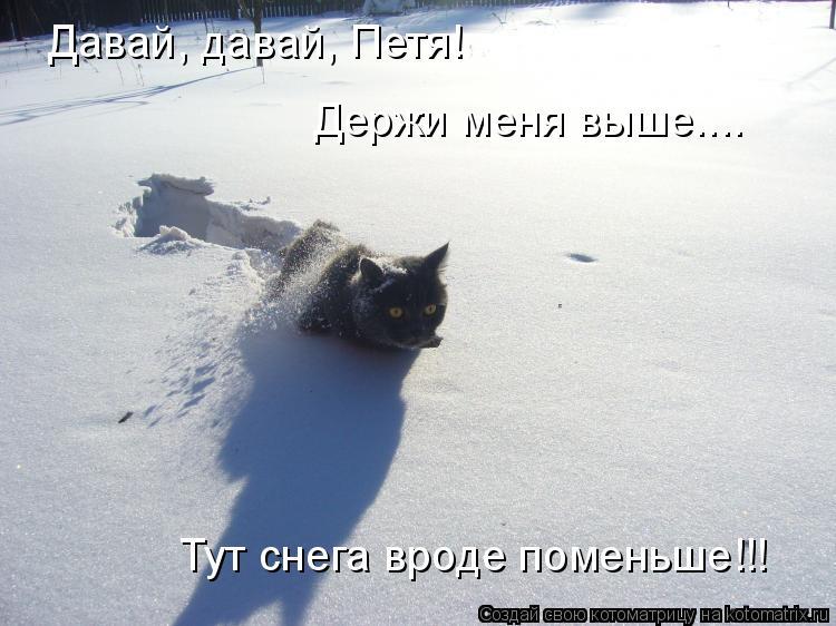 Котоматрица: Давай, давай, Петя!  Тут снега вроде поменьше!!!  Держи меня выше....