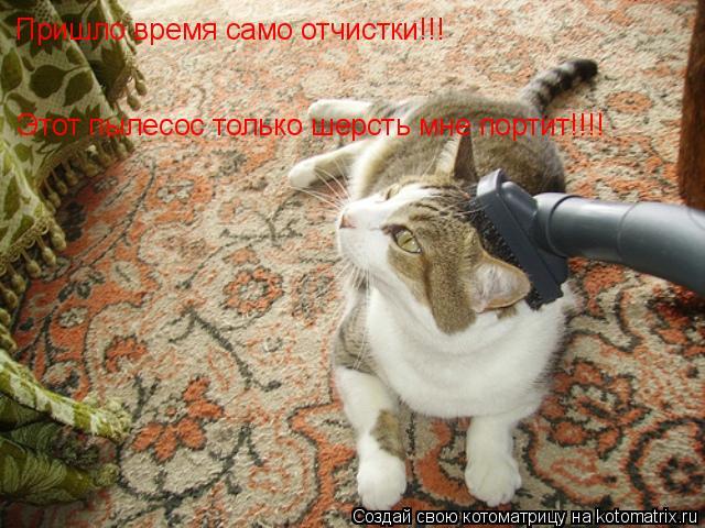 Котоматрица: Пришло время само отчистки!!! Этот пылесос только шерсть мне портит!!!!