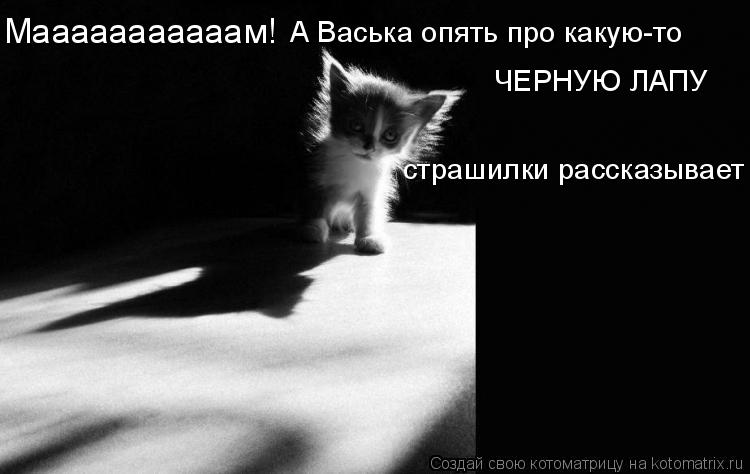 Котоматрица: Мааааааааааам! А Васька опять про какую-то  ЧЕРНУЮ ЛАПУ страшилки рассказывает