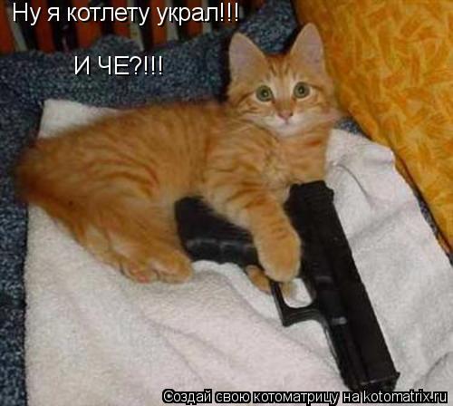 Котоматрица: Ну я котлету украл!!! И ЧЕ?!!!