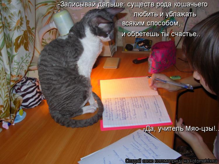 Котоматрица: -Записывай дальше: существ рода кошачьего  любить и ублажать всяким способом, и обретешь ты счастье.. -Да, учитель Мяо-цзы!..