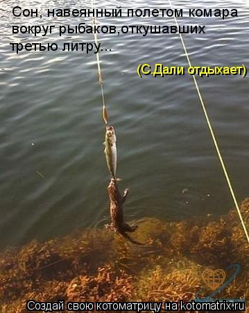 Котоматрица: Сон, навеянный полетом комара вокруг рыбаков,откушавших третью литру... (С.Дали отдыхает)