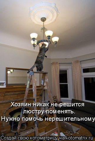 Котоматрица: Хозяин никак не решится люстру поменять. Нужно помочь нерешительному!