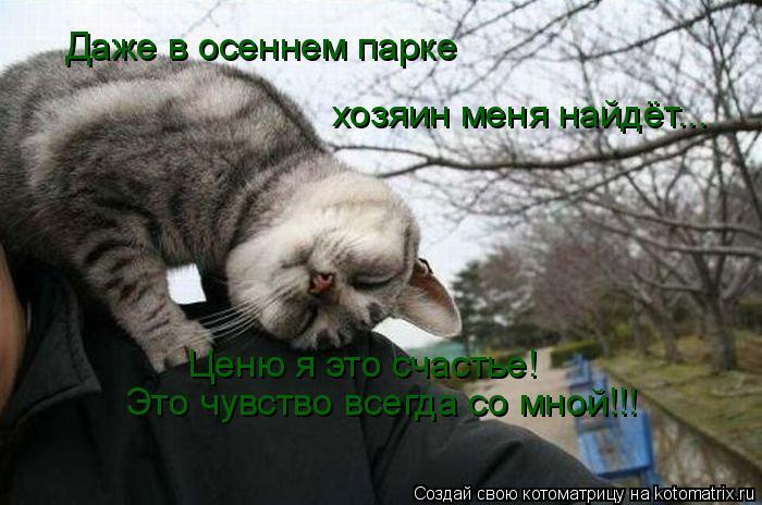 Котоматрица: Даже в осеннем парке  хозяин меня найдёт... Ценю я это счастье! Это чувство всегда со мной!!!