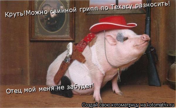Котоматрица: Круть!Можно свинной грипп по Техасу разносить! Отец мой меня не забудет!
