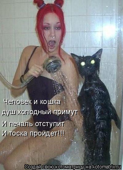 Котоматрица: Человек и кошка  душ холодный примут И печаль отступит И тоска пройдет!!!
