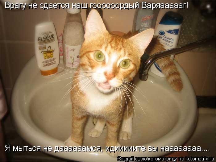 Котоматрица: Врагу не сдается наш гоооооордый Варяаааааг! Я мыться не даааааамся, идииииите вы наааааааа....