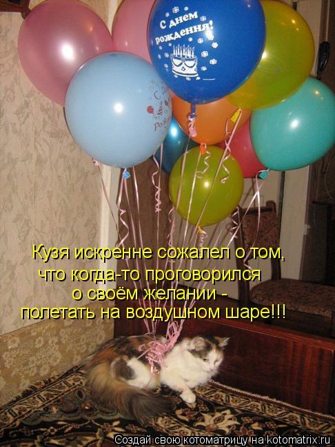 Котоматрица: Кузя искренне сожалел о том, что когда-то проговорился  о своём желании - полетать на воздушном шаре!!!
