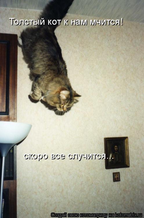 Котоматрица: Толстый кот к нам мчится! скоро все случится...