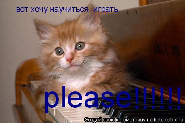 Котоматрица: вот хочу научиться  играть   please !!!!!!