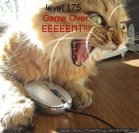 Котоматрица: level 175 Game Over ЕЕЕЕЕПТ!!!