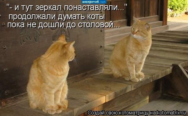 """Котоматрица: продолжали думать коты пока не дошли до столовой... """"- и тут зеркал понаставляли..."""""""