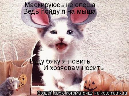 Котоматрица: Маскируюсь не спеша Ведь пойду я на мыша Буду бяку я ловить И хозяевам носить
