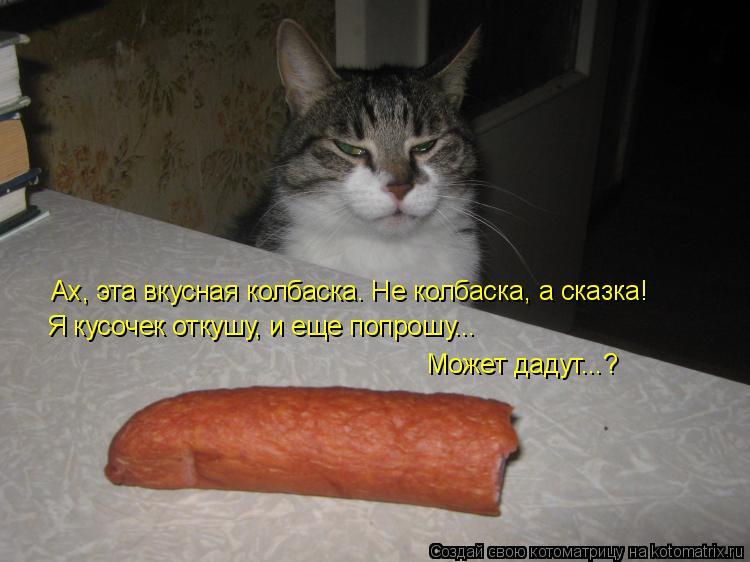 Котоматрица: Ах, эта вкусная колбаска. Не колбаска, а сказка! Я кусочек откушу, и еще попрошу... Может дадут...?