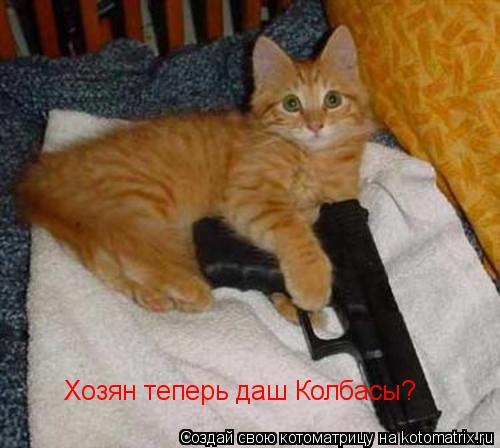 Котоматрица: Хозян теперь даш Колбасы?