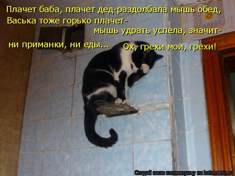 Котоматрица: Плачет баба, плачет дед-раздолбала мышь обед, Васька тоже горько плачет- мышь удрать успела, значит- ни приманки, ни еды... Ох, грехи мои, грехи