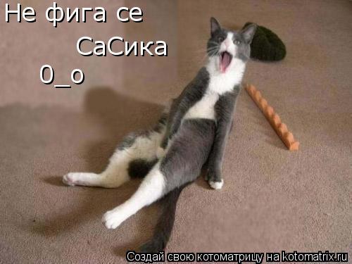 Котоматрица: Не фига се СаСика 0_о