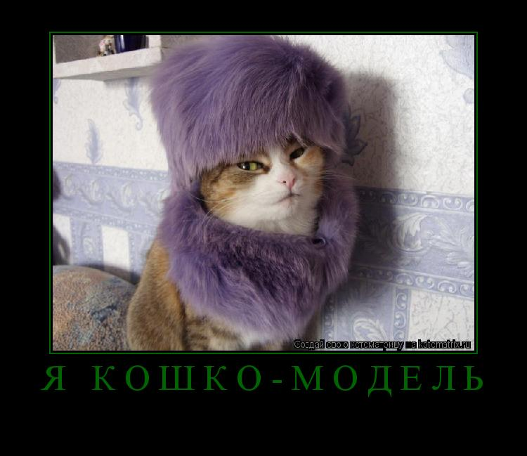 Котоматрица: я кошко-модель