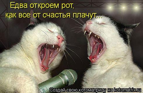 Котоматрица: как все от счастья плачут... Едва откроем рот,