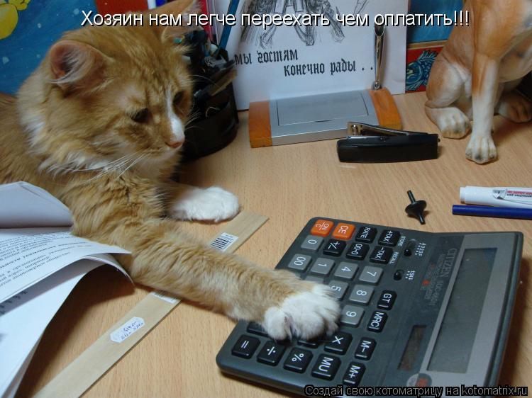 Котоматрица: Хозяин нам легче переехать чем оплатить!!!