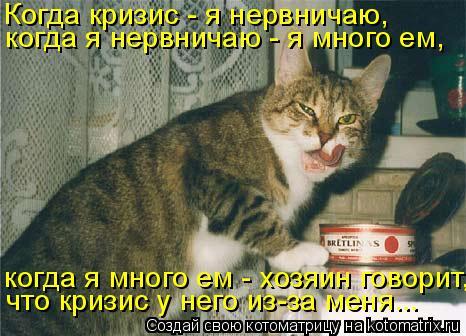Котоматрица: Когда кризис - я нервничаю, когда я нервничаю - я много ем, когда я много ем - хозяин говорит, что кризис у него из-за меня...