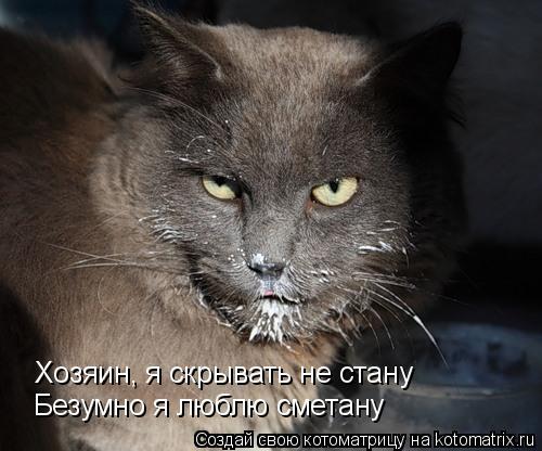 Котоматрица: Хозяин, я скрывать не стану Безумно я люблю сметану